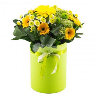 Коробочка с гермини и хризантемой